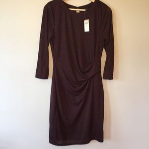 Ann Taylor  Ruched Dress Size Small